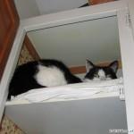 2005-10-23 - Grouik in the closet