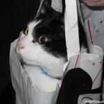2005-12-23 - Grouik in a bag