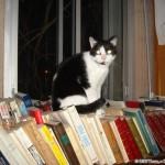 2007-02-24 - Grouik on books