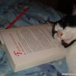 2007-06-10 - Grouik reading...
