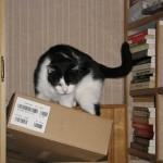 2007-12-01 - Grouik in boxes