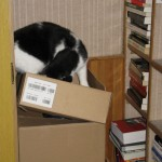 2007-12-01 - Grouik and boxes