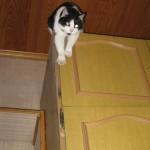 2007-12-01 - Grouik on the closet