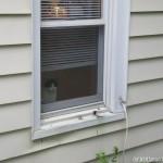 2011-08-28 - Grouik looking outside