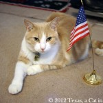 4th-of-July-2012_02