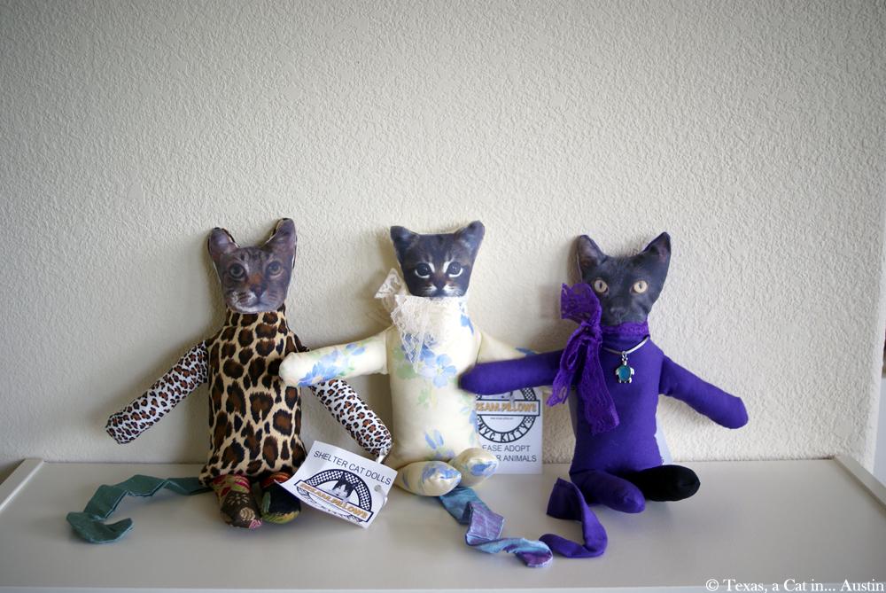 Shelter Cat Dolls