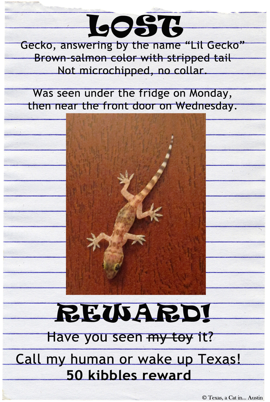 Lost Gecko Poster