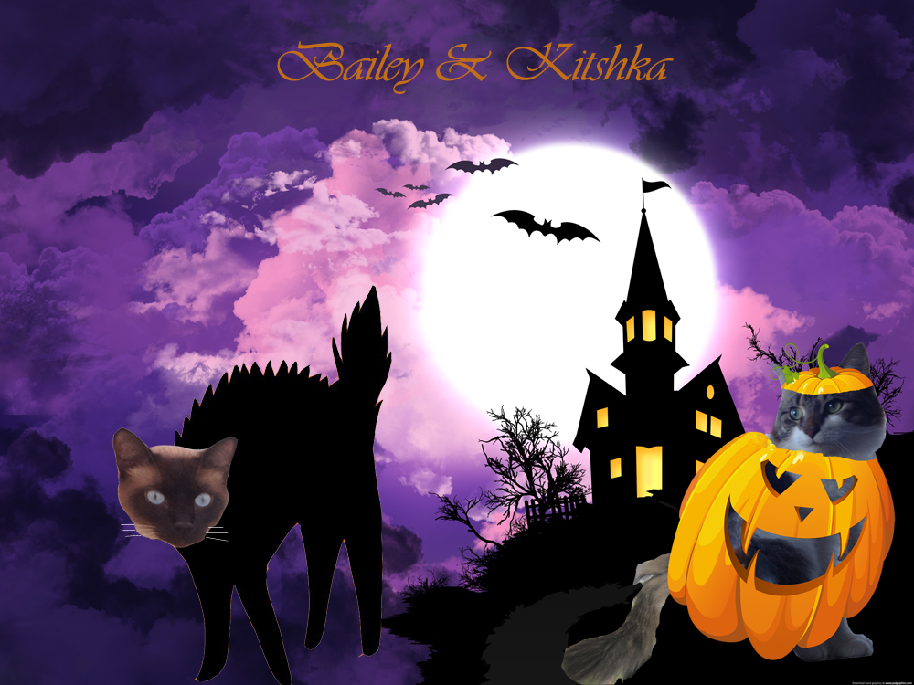 Bailey-Kitshka-Halloween-Ball-2013-