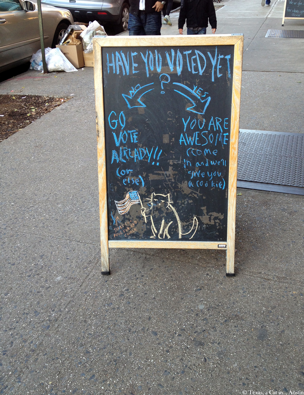 Bookstore-Cats---Park-Slope-Community_01