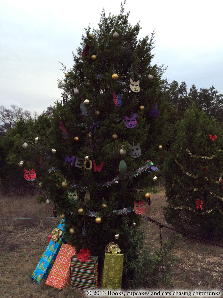 Kitty Christmas Tree on Loop 360 in Austin, TX | Texas, a cat in... Austin