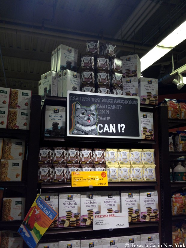 Cats in New York: Whole Foods Tribeca Can Has Milk