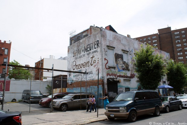 It's Caturday! Cat Mural in New York (Part 2)