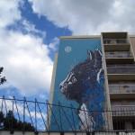 C215 Cat Street Art - Paris, France | Texas, a cat in... Austin