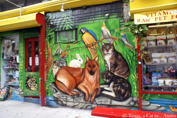 It's (Still) Caturday! Cat Mural in New York (Part 3)